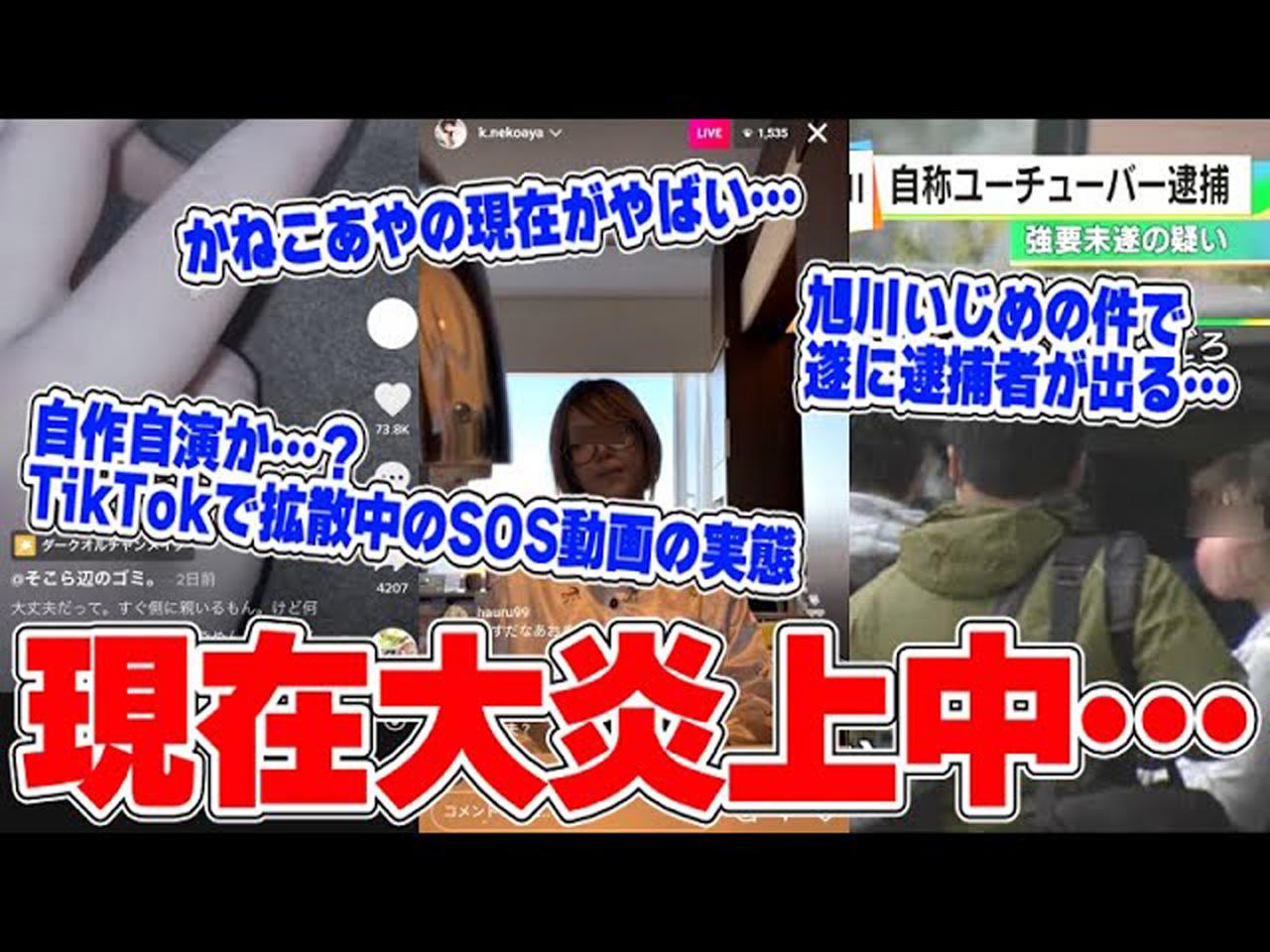 TikTokで話題の栃木虐待投稿 YouTuberのコレコレが音声加工で「うそくさい」