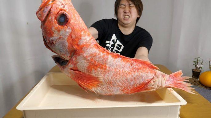 気まぐれクックが5kgの深海魚「メヌケ」を入手 しゃぶしゃぶを作る様子をYouTubeで公開